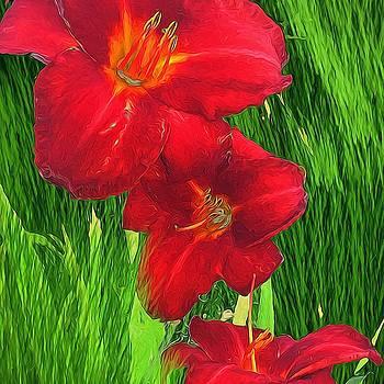 Cindy Boyd - Red Lilies Green Grass