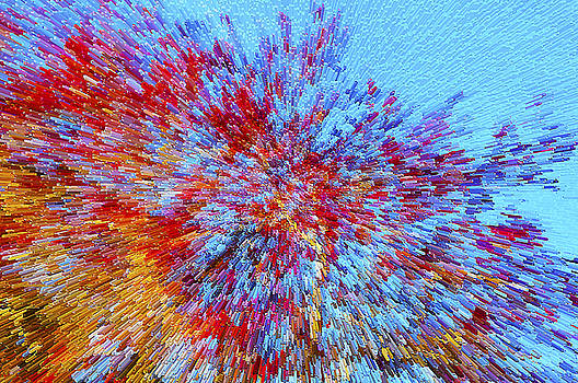 Red Maples against a Blue Sky by Gerald Grow