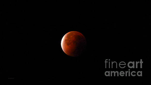 Red Moon Eclipse by Jason Christopher