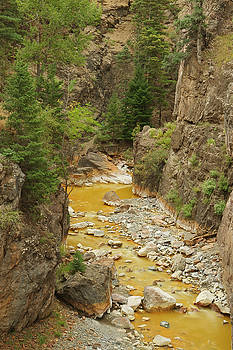 Red Mountain Creek by Jerry Mann
