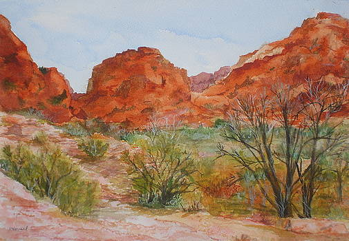 Red Rock Canyon by Vicki  Housel