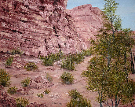 Red Rock Trail by Roseann Gilmore