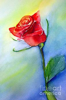 Red Rose by Allison Ashton