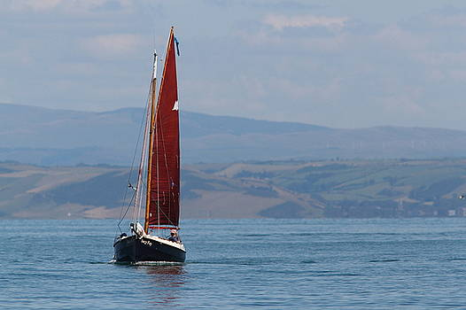 Red Sail by Richard Patmore