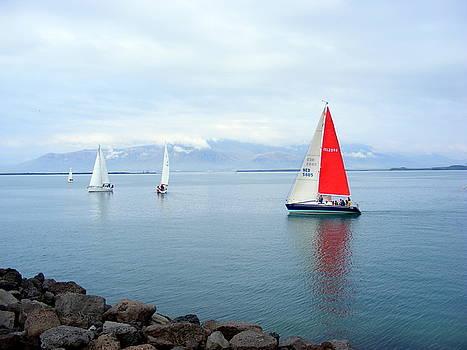 Red Sailing Freedom by Elena Tudor