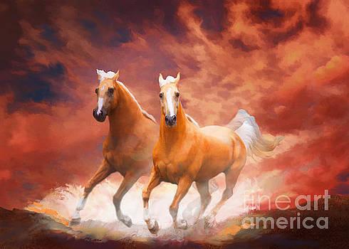 Red Sky Run by Melinda Hughes-Berland