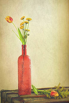 Red Still Life by Jerri Moon Cantone