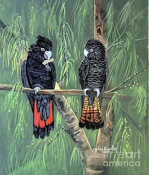 Red Tailed Black Cockatoos by Audrey Russill