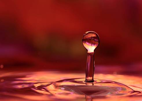 Sabrina L Ryan - Red Water Drop
