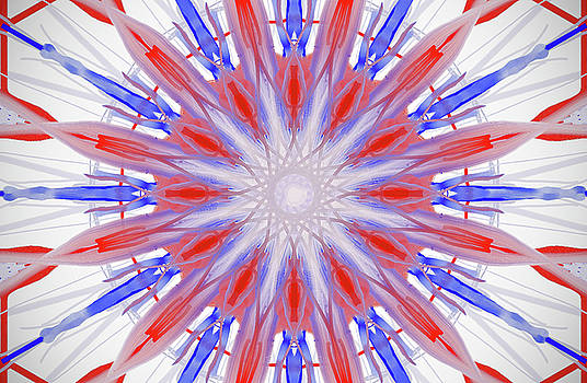 Red White and Blue by Savannah Gibbs