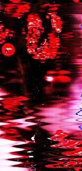 Anne-elizabeth Whiteway - Red Wreath Reflections