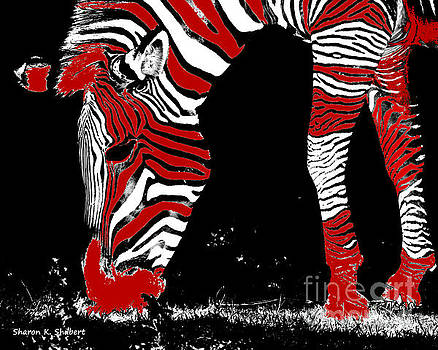 Red Zebra by Sharon K Shubert