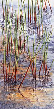 Reeds by Elaine Farmer