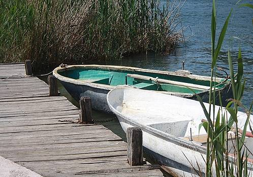 Tracey Harrington-Simpson - Reeds Rowing Boats and Old Jetty at Dalyan