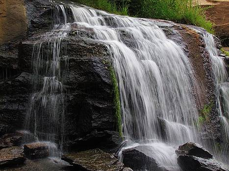 Reedy Falls by Ginger Wemett