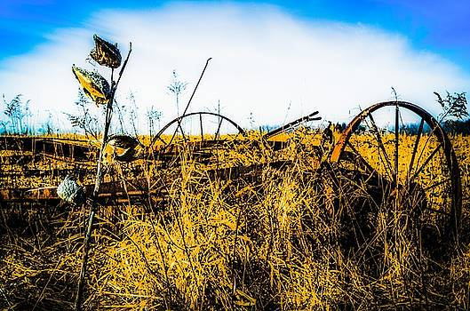 Milkweed and Old Farm Equipment by Karl Anderson