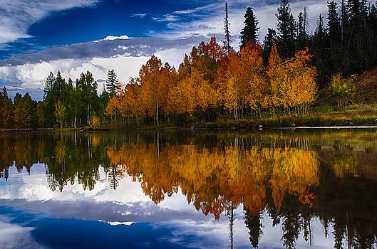 Reflecting Colors by Dewey Farmer