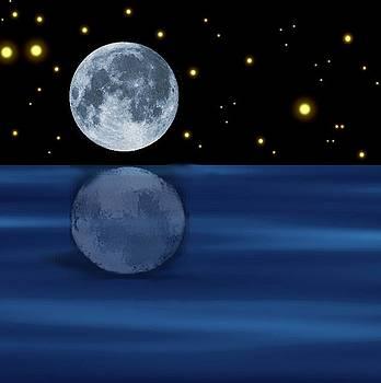 Reflecting Moon by Karen Conine