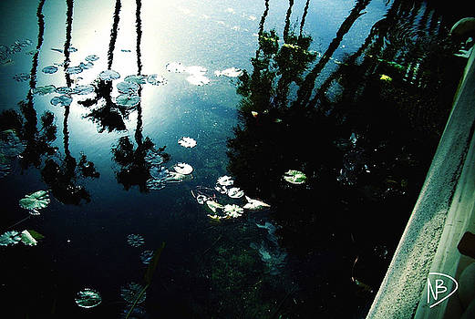 Reflecting Pond by Nicole Dumond-Barry