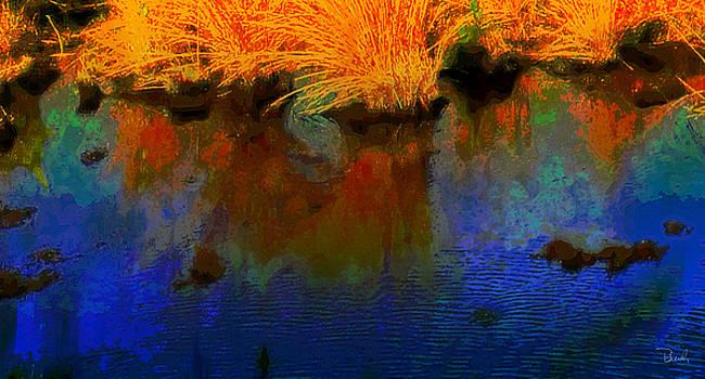 Reflection #4 by Brad Bleich