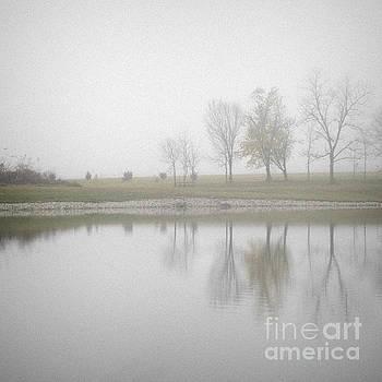 Reflection In the Fog by Tamara Becker