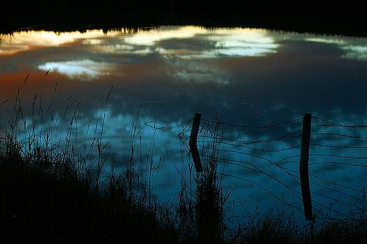 Reflection of the sky in a pond by Mario Brenes Simon