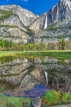 Reflection  by Scott McGuire