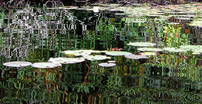 Anne Babineau - reflections