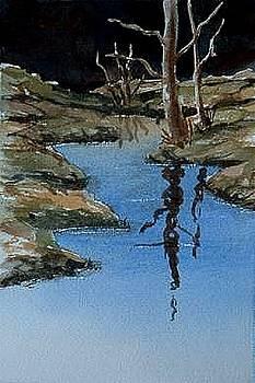 Reflections by Darla Brock