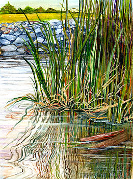 Reflections by Elaine Hodges