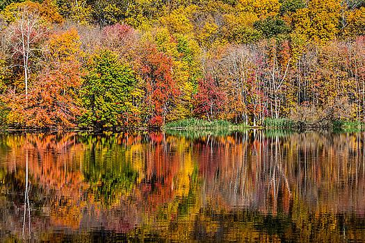Karol Livote - Reflections Of Autumn
