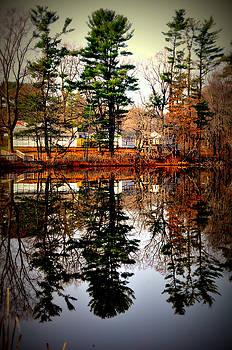 Reflections On Farrington Lake by Aron Chervin