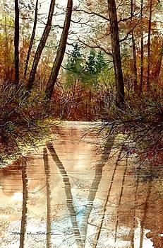 Reflections by Steven W Schultz