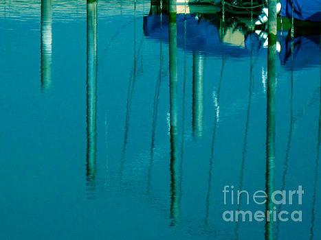 Susanne Van Hulst - Reflections