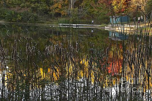 Reflective Waters by Don Kenworthy