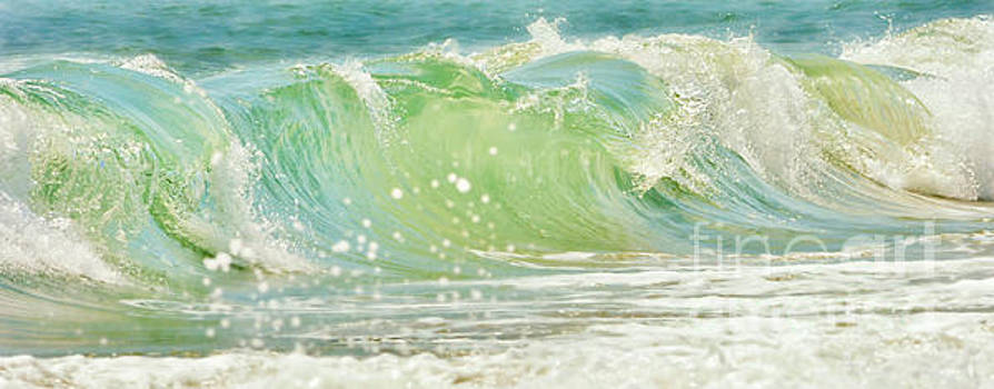 Refreshing Blues by Kelly Nowak