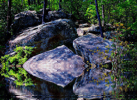 Refreshing Place On A Hot Day by Barbara Teller