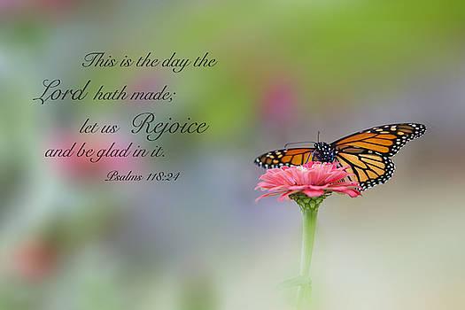 Rejoice by Angela Tice Gunn