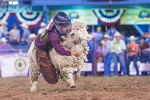 Reno Rodeo by Kobby Dagan