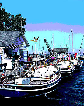 Rental Boats, Chicago Marina by Charles Shoup