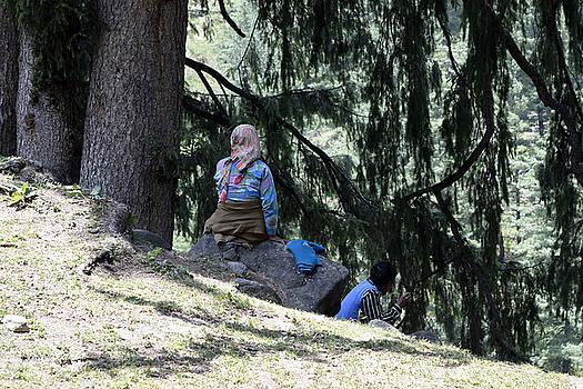 Rest on the hills by Sumit Mehndiratta