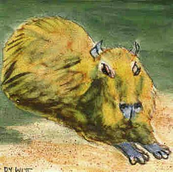 Resting Capybara by Dy Witt