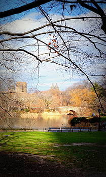 Resting in Central Park by Laurie Pike