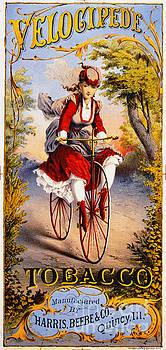 Retro Tobacco Label 1874 by Padre Art