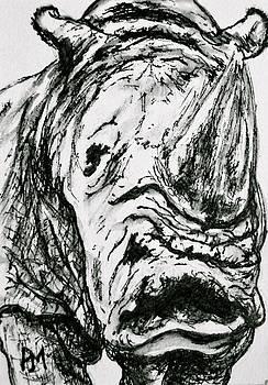 Rhino by Pete Maier