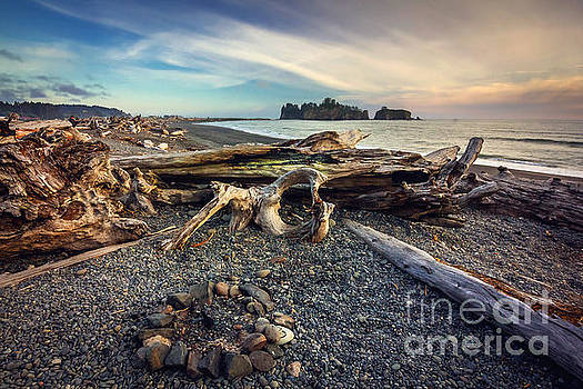 Rialto Beach Washington by Joan McCool
