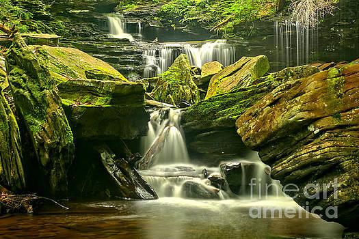 Adam Jewell - Ricketts Glen Waterfalling Everywhere