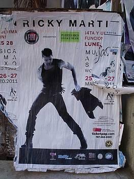 Ricky Martin in Concert by Anna Villarreal Garbis