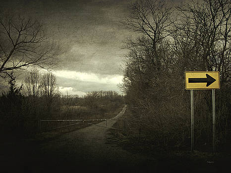 Right Turn Only by Cynthia Lassiter