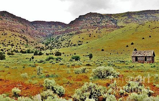 Rim Rock and Sage Brush by Michele Penner